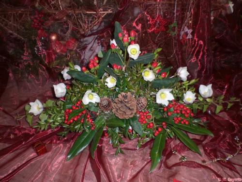 Florales 12-09 034