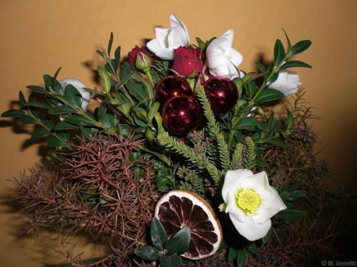 für Florales 2010 (3)