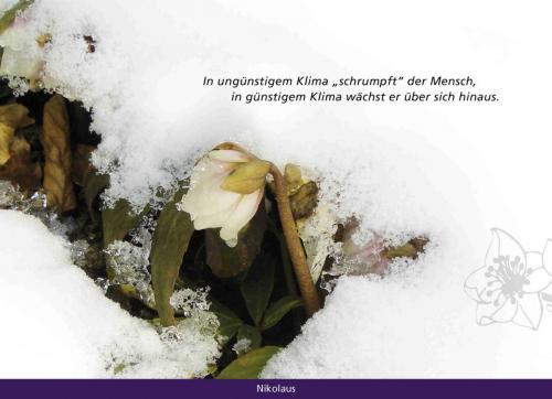 kl Adventskalender_14
