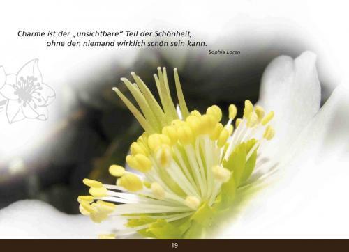 kl Adventskalender_40
